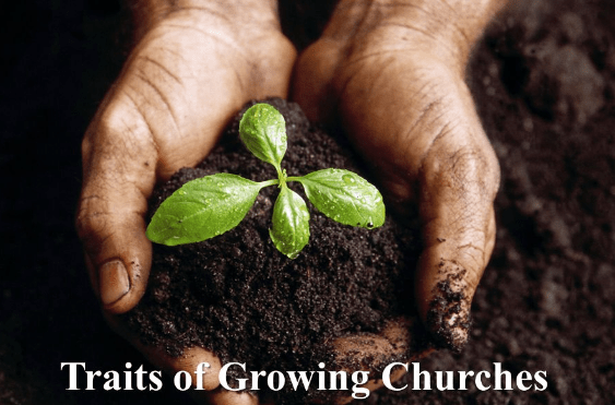 traits of growing churches, church growth strategy
